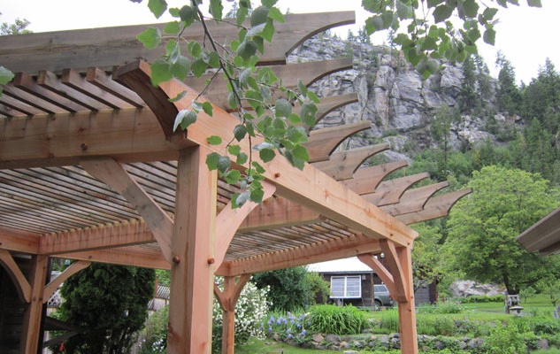 trc-timberworks-timber-framing-trellis-0787